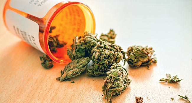 How Effective Are Medical Marijuana to Treat Drug Addiction?